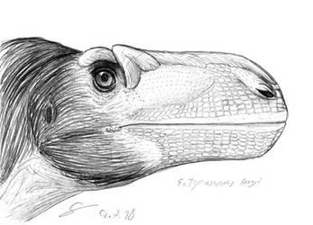 Eotyrannus lengi sketch portrait by ShinRedDear