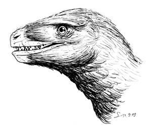 Saurornitholestes inked portrait by ShinRedDear