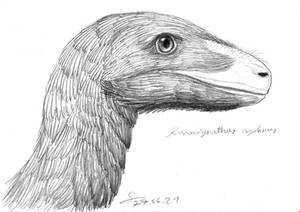 Kansaignathus sogdianus