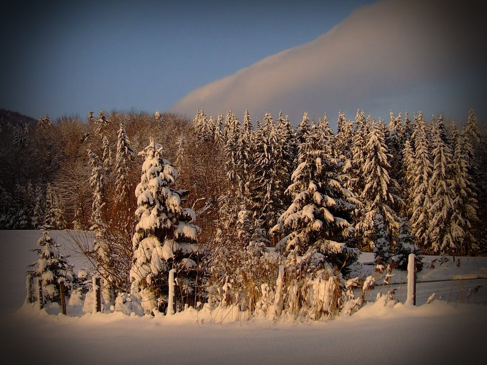 im dreaming of a white christmas by hekla01