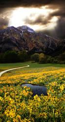 Landscape Manipulation by Jejune-mH