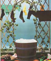 Do the washing by morana-stock