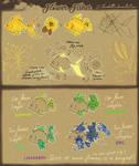 Flower Fishes [Updated species info]