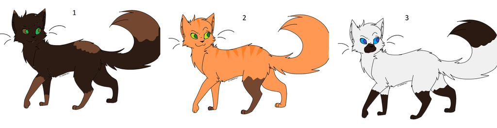 How To Be A Cat Aj Adoption
