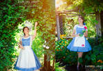 Belle Beauty and the Beast Cosplay Pinafores