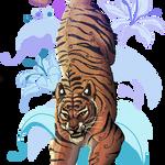 Floral Tiger by griffling