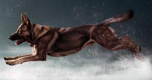 Storm Breaker by Maranez