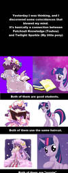 Connection between Touhou and My little pony by TiXoLSeyerk