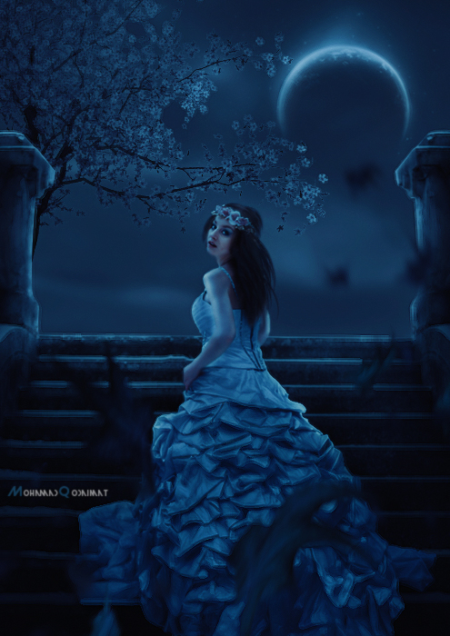 The Night Bride by QdMohamad