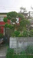 Japanese house by skizophrenia1209