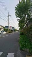 Japanese landscape by skizophrenia1209