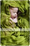 Green by Aixchel