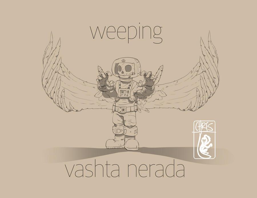 Vashta angel by slippyninja