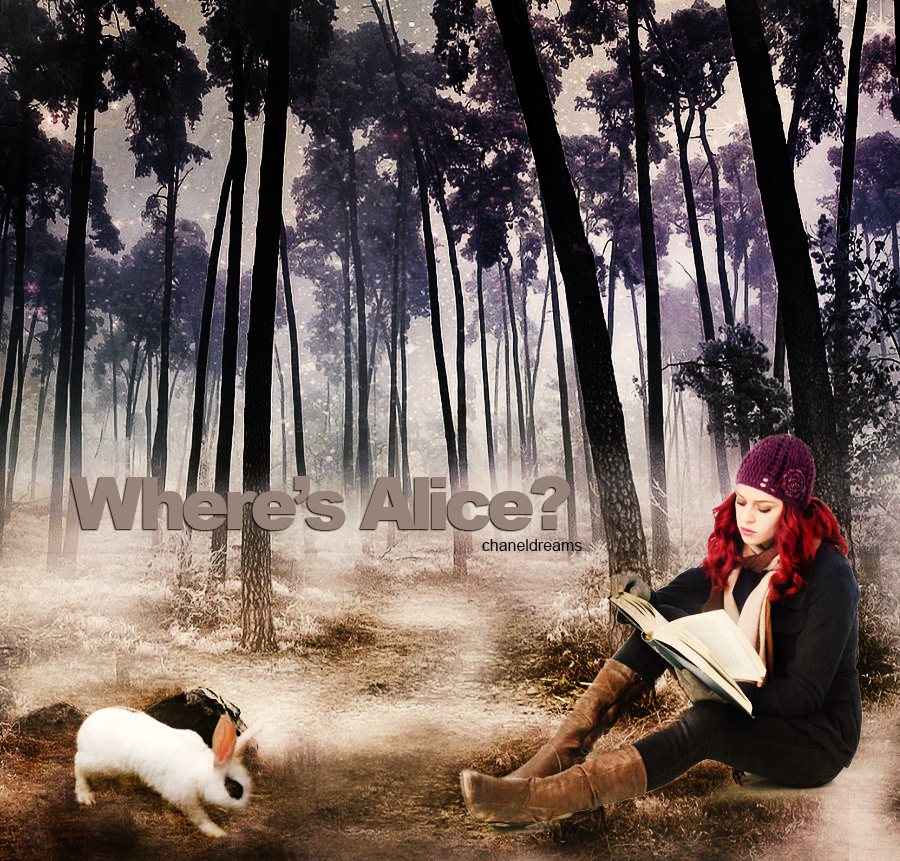 Where's Alice? by chaneldreams