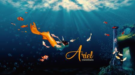Ariel by chaneldreams