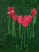 Tulips by UprisingStars