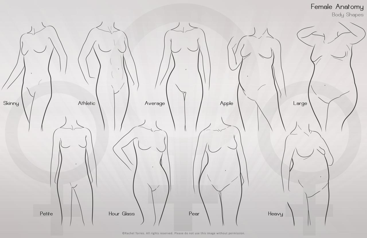 Female Anatomy I by racheltorres921