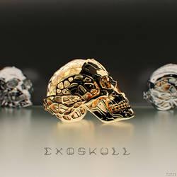 Exoskull