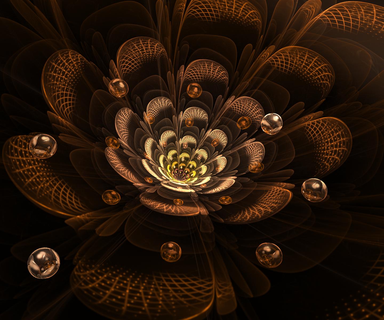 September Flower by MadameLuciferi