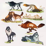 A whole bunch of doggies