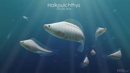 Haikouichthys by zeebow14