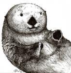 Hugs for otter?