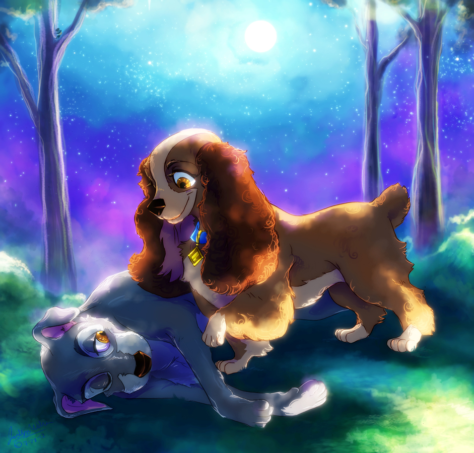 CC: Lady and Tramp by MistyTang