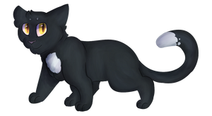 Ravenpaw by OpaIescent