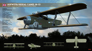 ReferenceModel-SopwithHexial-Camel-Biplane