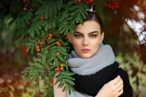 Sorbus by SauliusPhotography