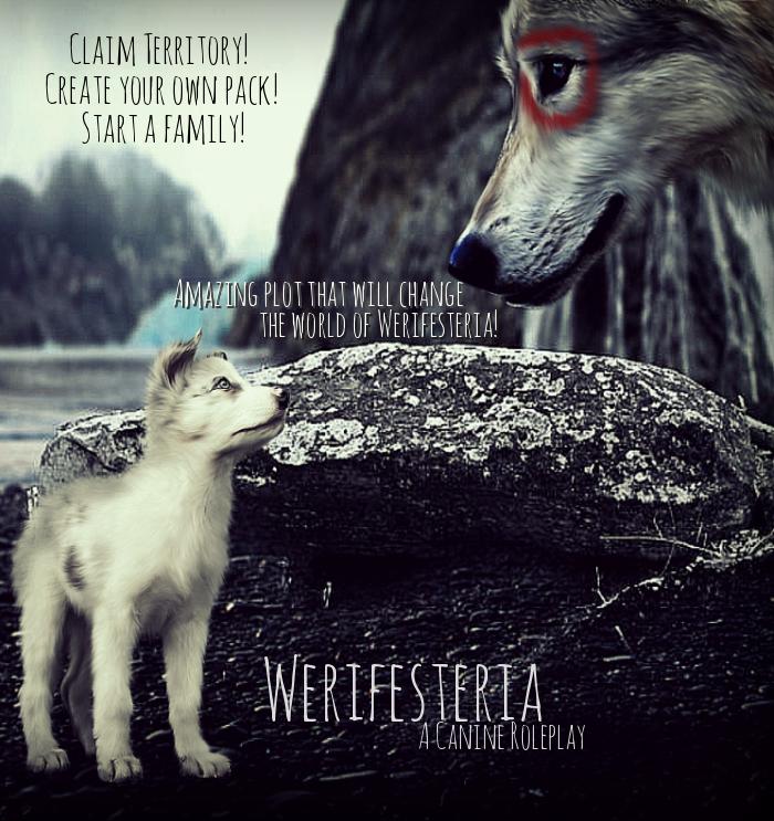 Werifesteria Semi-Realistic Canine Rolepay Icrn9m1461338921_by_catwithorangefruit-d9zxjpv