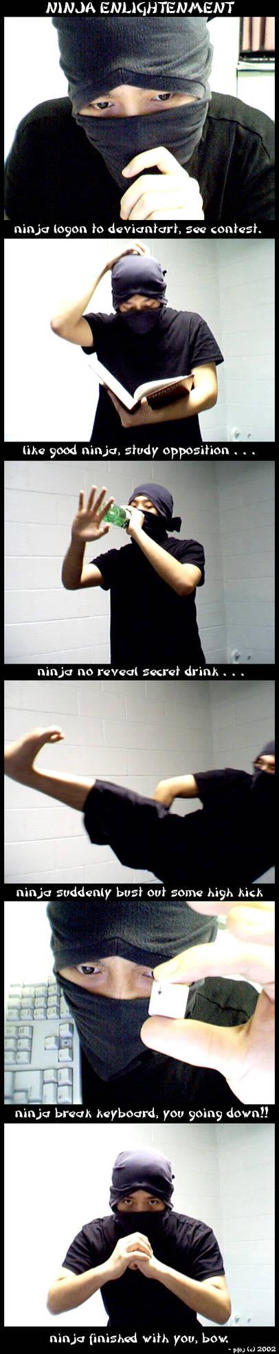 ninja enlightenment