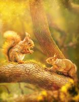 The Oak Tree by PetyaPlamenova
