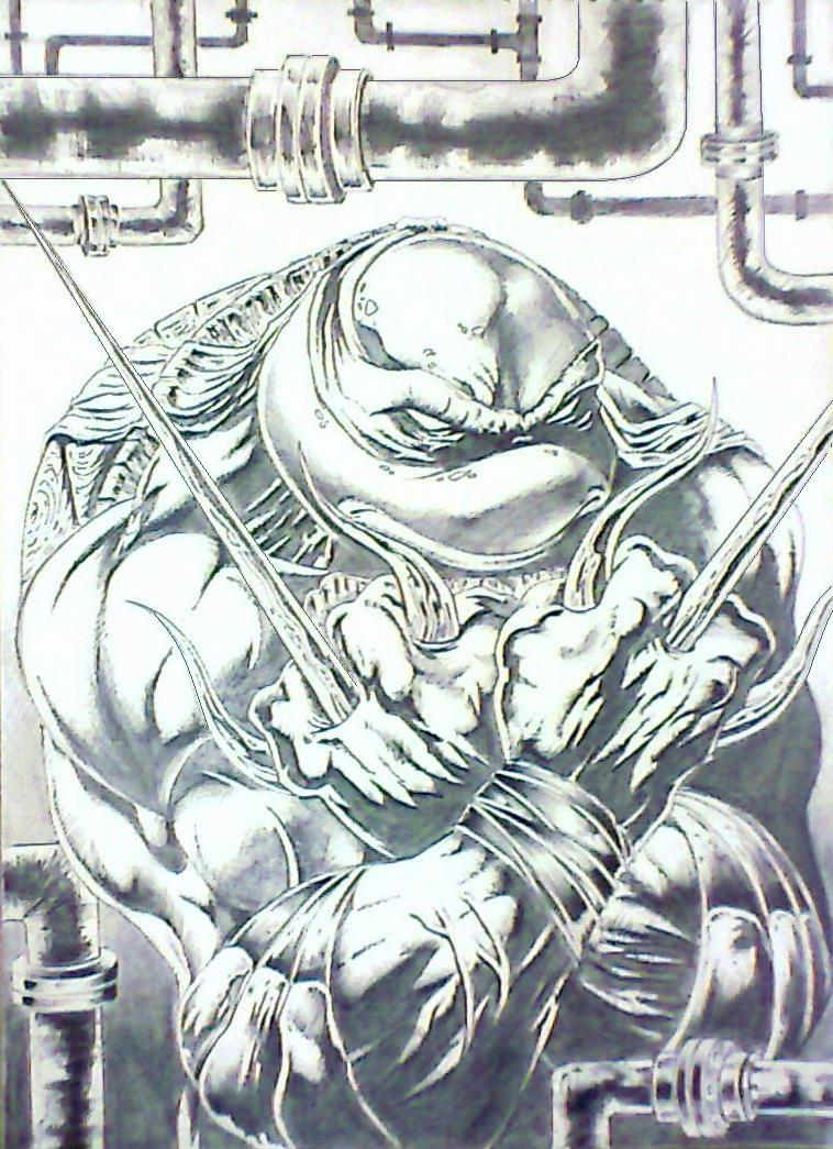 Raphael : TMNT by mindsetteler