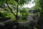 Nature BG 126