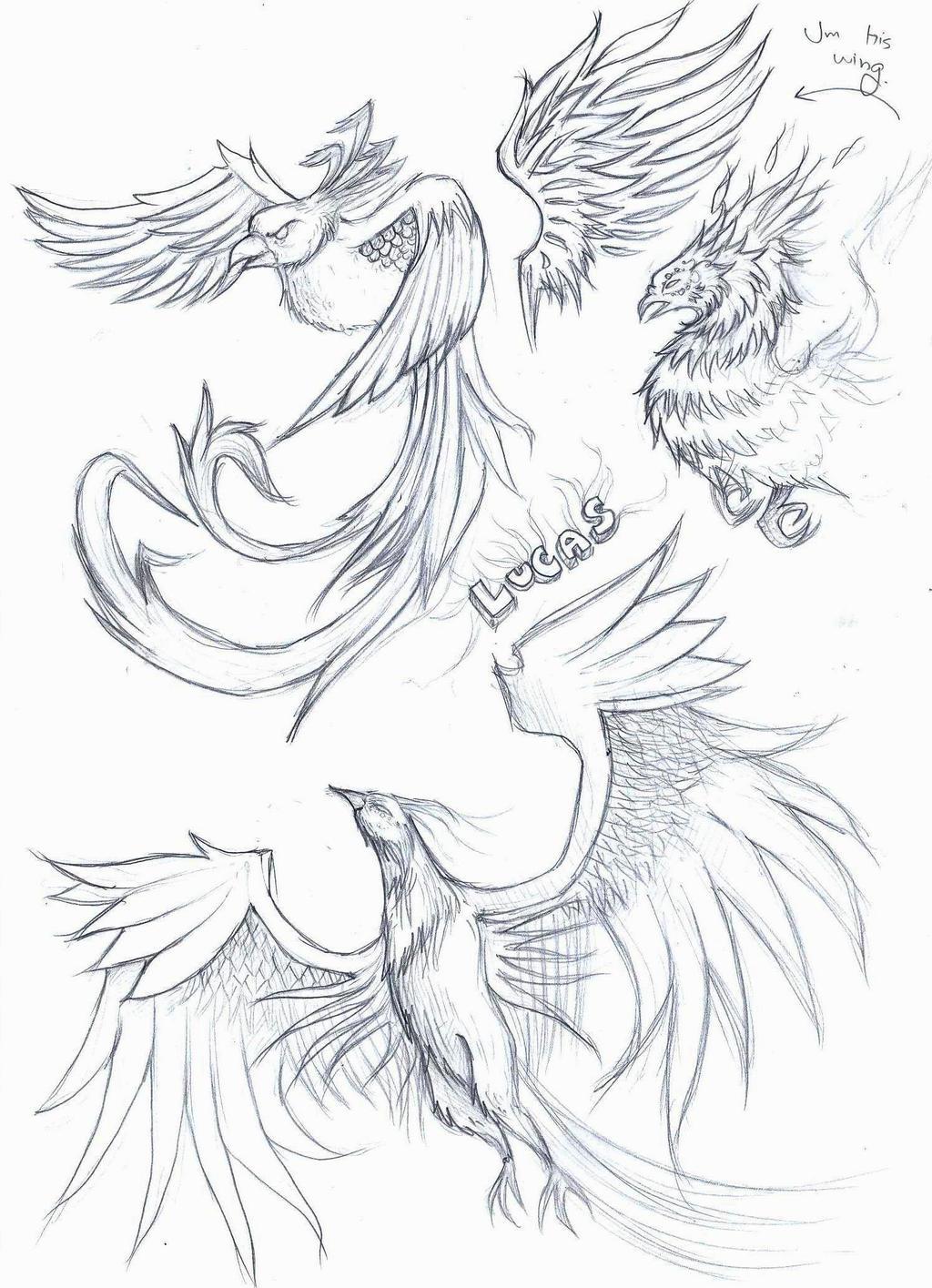 phoenix tattoo sketch by elenoosh on deviantart. Black Bedroom Furniture Sets. Home Design Ideas