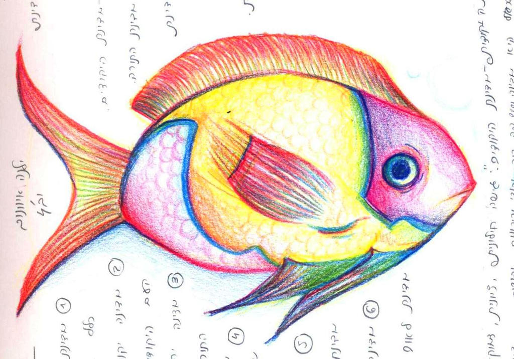 Color fish Illustrations and Clipart 29026 Color fish