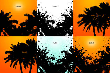 Palms Series by SylvaKnight
