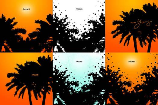 Palms Series