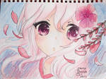 Cherry Blossom by L-L-arts