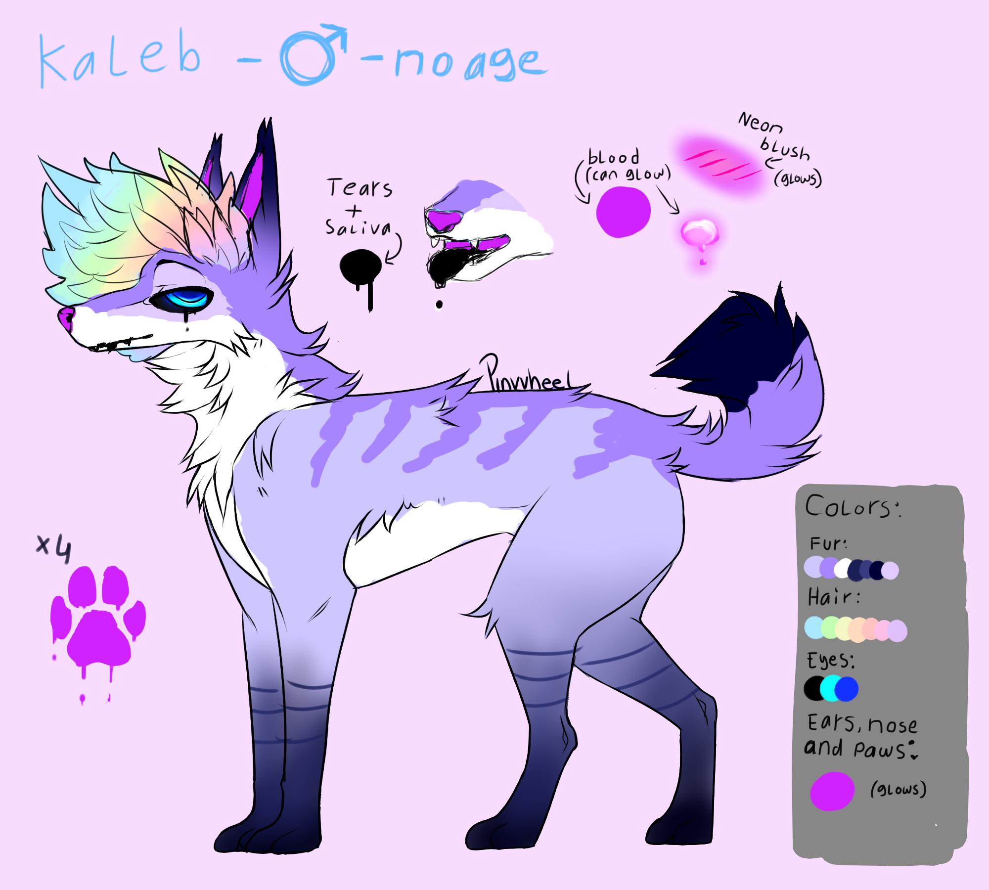 Kaleb Ref Sheet by L-L-arts