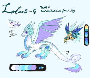 Lotus (Custom)