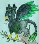 Tree Gryphon Official Colors