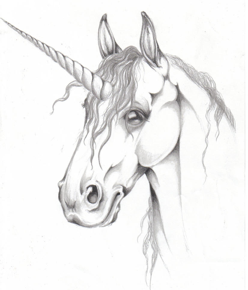 Unicorn Head Drawings Realistic Pictures to Pin on ...