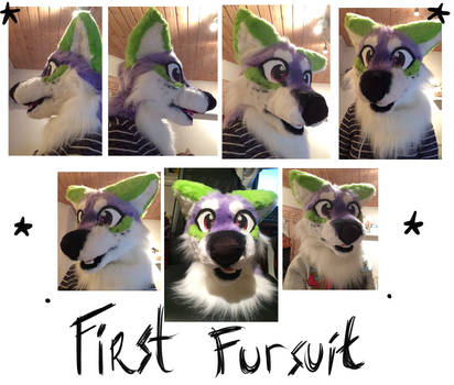 First fursuit head