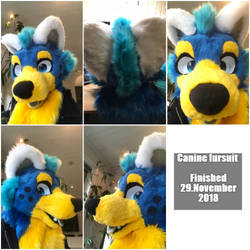 Canine fursuit premade[Sold]! by Vaporclaws