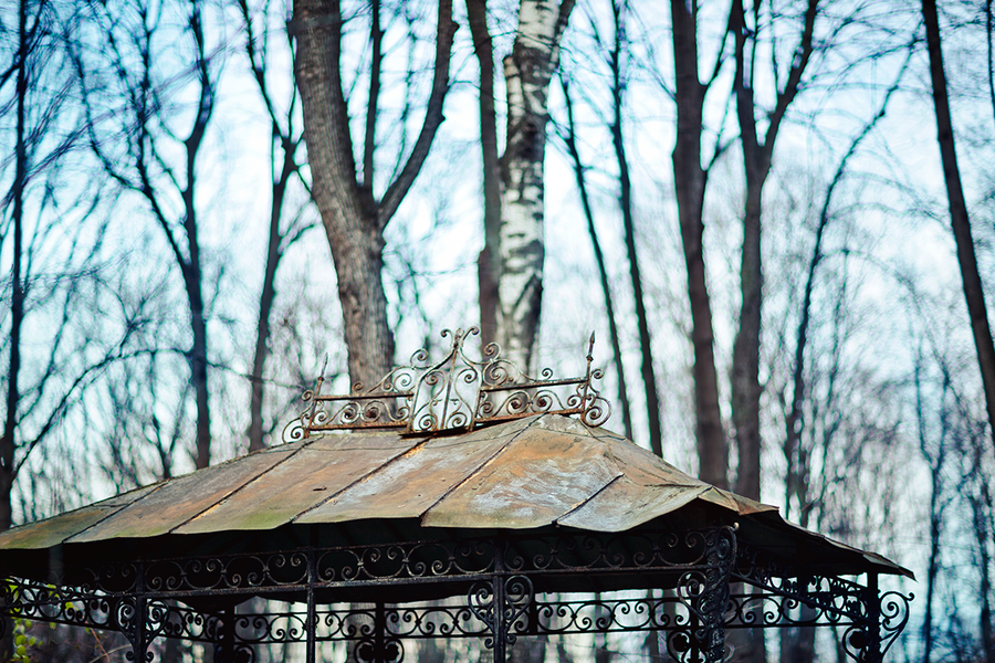Graveyard by birdofdecadence