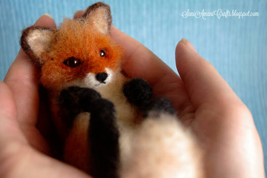 Red fox II