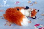 red fox 5'' iii