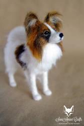 Esme Marie / Pet Portrait
